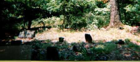 *HERSPERGER CEMETERY OVERVIEW, . - Fulton County, Arkansas   . *HERSPERGER CEMETERY OVERVIEW - Arkansas Gravestone Photos