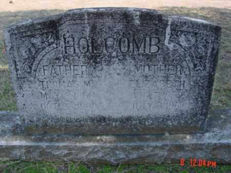 HOLCOMB, ELIZABETH - Fulton County, Arkansas | ELIZABETH HOLCOMB - Arkansas Gravestone Photos