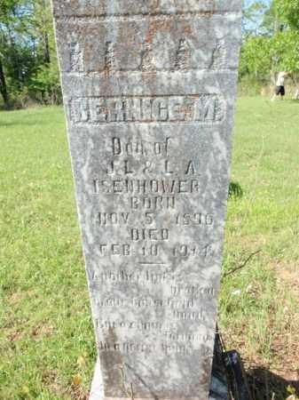 ISENHOWER, BERNICE M - Fulton County, Arkansas   BERNICE M ISENHOWER - Arkansas Gravestone Photos