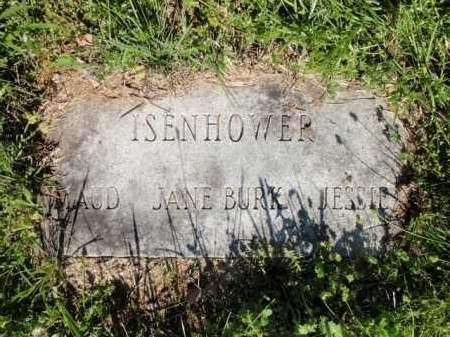 ISENHOWER, JESSIE - Fulton County, Arkansas | JESSIE ISENHOWER - Arkansas Gravestone Photos