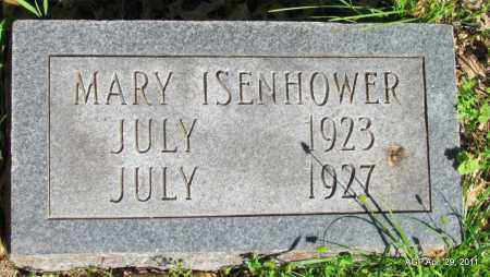 ISENHOWER, MARY - Fulton County, Arkansas | MARY ISENHOWER - Arkansas Gravestone Photos