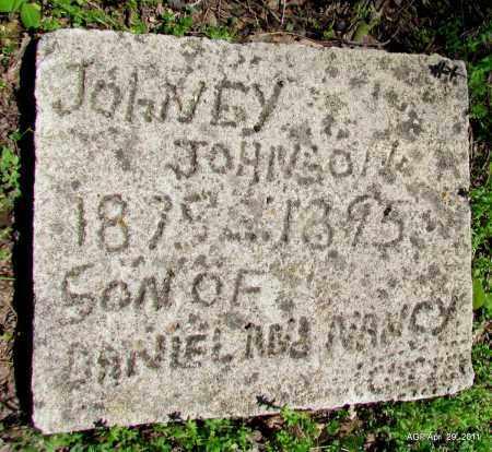 JOHNSON, JOHNEY - Fulton County, Arkansas | JOHNEY JOHNSON - Arkansas Gravestone Photos