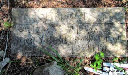 JOHNSON, LOUIZA - Fulton County, Arkansas | LOUIZA JOHNSON - Arkansas Gravestone Photos