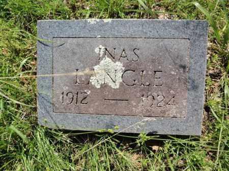 LANGLE, INAS - Fulton County, Arkansas | INAS LANGLE - Arkansas Gravestone Photos