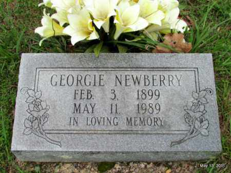 NEWBERRY, GEORGIE - Fulton County, Arkansas | GEORGIE NEWBERRY - Arkansas Gravestone Photos
