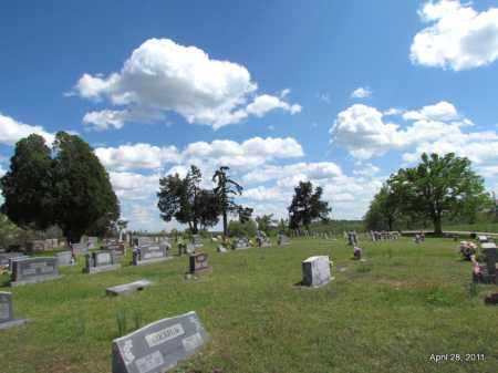 *OVERVIEW,  - Fulton County, Arkansas |  *OVERVIEW - Arkansas Gravestone Photos