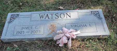 WATSON, JAMES C. - Fulton County, Arkansas | JAMES C. WATSON - Arkansas Gravestone Photos