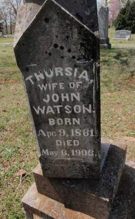 WATSON, THURSIA - Fulton County, Arkansas | THURSIA WATSON - Arkansas Gravestone Photos