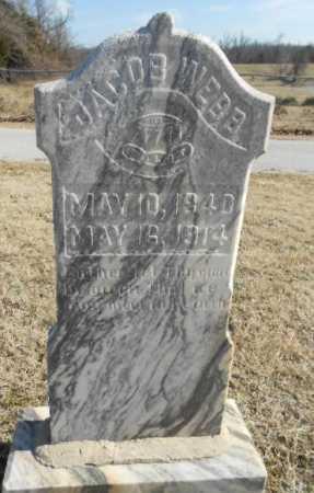 WEBB, JACOB - Fulton County, Arkansas | JACOB WEBB - Arkansas Gravestone Photos