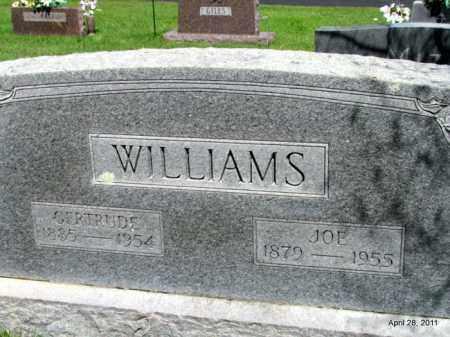 WILLIAMS, JOE - Fulton County, Arkansas | JOE WILLIAMS - Arkansas Gravestone Photos