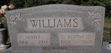 WILLIAMS, BERTHA - Fulton County, Arkansas | BERTHA WILLIAMS - Arkansas Gravestone Photos