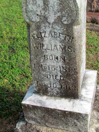 WILLIAMS, ELIZABETH - Fulton County, Arkansas | ELIZABETH WILLIAMS - Arkansas Gravestone Photos
