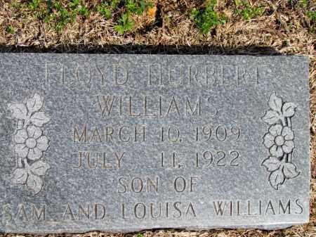 WILLIAMS, FLOYD HURBERT - Fulton County, Arkansas | FLOYD HURBERT WILLIAMS - Arkansas Gravestone Photos