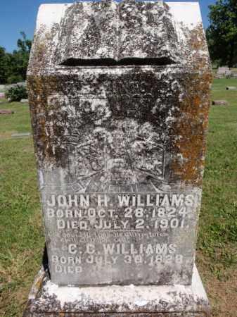 WILLIAMS, CATHERINE C - Fulton County, Arkansas | CATHERINE C WILLIAMS - Arkansas Gravestone Photos