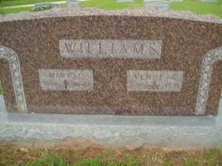 WILLIAMS, MARY E - Fulton County, Arkansas | MARY E WILLIAMS - Arkansas Gravestone Photos
