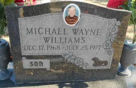 WILLIAMS, MICHAEL WAYNE - Fulton County, Arkansas | MICHAEL WAYNE WILLIAMS - Arkansas Gravestone Photos
