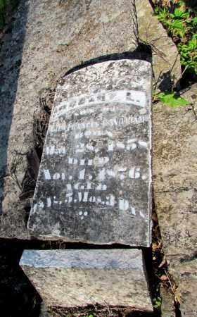 WILLIAMS, ROBERT L - Fulton County, Arkansas | ROBERT L WILLIAMS - Arkansas Gravestone Photos