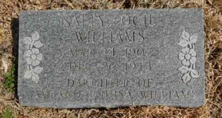 WILLIAMS, SALLY OCII - Fulton County, Arkansas | SALLY OCII WILLIAMS - Arkansas Gravestone Photos