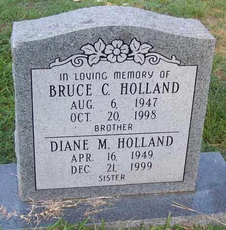 HOLLAND, DIANE M - Grant County, Arkansas | DIANE M HOLLAND - Arkansas Gravestone Photos
