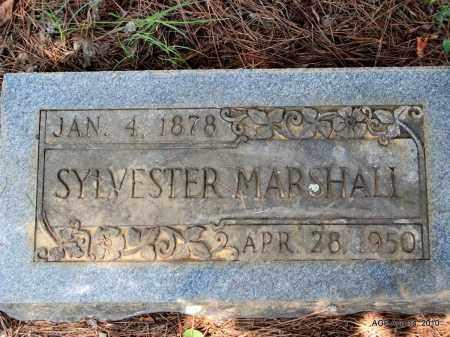 MARSHALL, SYLVESTER - Grant County, Arkansas | SYLVESTER MARSHALL - Arkansas Gravestone Photos