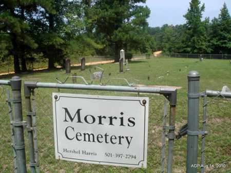 *MORRIS CEMETERY OVERVIEW,  - Grant County, Arkansas |  *MORRIS CEMETERY OVERVIEW - Arkansas Gravestone Photos