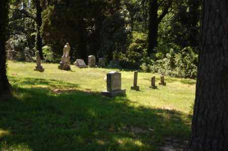 * MOORE CEMETERY OVERVIEW 1,  - Greene County, Arkansas    * MOORE CEMETERY OVERVIEW 1 - Arkansas Gravestone Photos