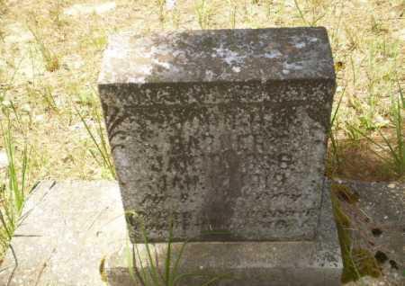 BARNER, JOHN H - Greene County, Arkansas   JOHN H BARNER - Arkansas Gravestone Photos