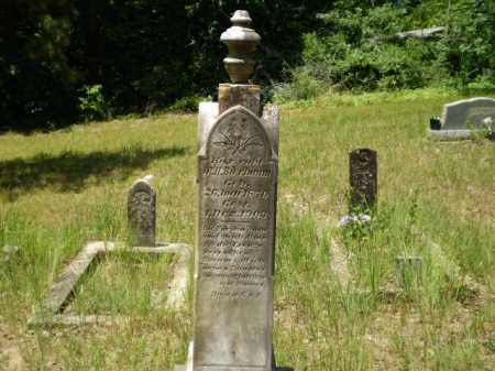 BIERBAUM, W.H. - Greene County, Arkansas | W.H. BIERBAUM - Arkansas Gravestone Photos