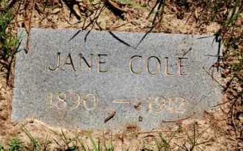 COLE, JANE - Greene County, Arkansas | JANE COLE - Arkansas Gravestone Photos