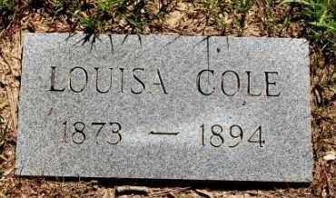 COLE, LOUISA - Greene County, Arkansas | LOUISA COLE - Arkansas Gravestone Photos