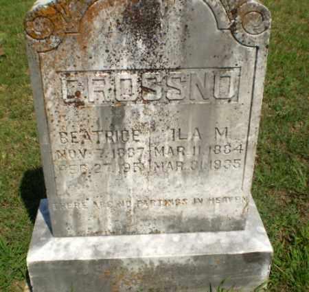 CROSSNO, ILA M - Greene County, Arkansas   ILA M CROSSNO - Arkansas Gravestone Photos