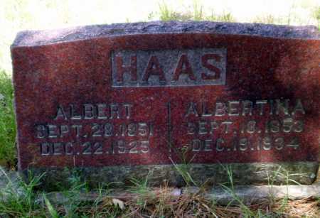 HAAS, ALBERT - Greene County, Arkansas | ALBERT HAAS - Arkansas Gravestone Photos