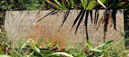 HENSON, ALBERT G. - Greene County, Arkansas | ALBERT G. HENSON - Arkansas Gravestone Photos