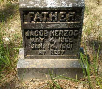 HERZOG, JACOB - Greene County, Arkansas   JACOB HERZOG - Arkansas Gravestone Photos