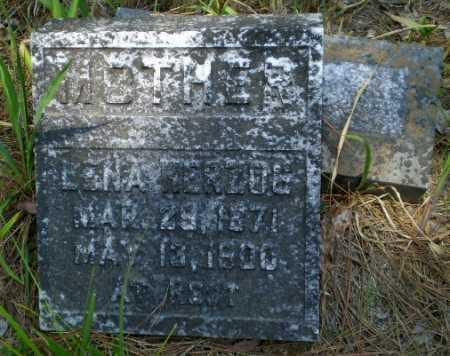 HERZOG, LENA - Greene County, Arkansas   LENA HERZOG - Arkansas Gravestone Photos