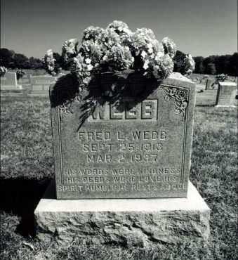 WEBB, FRED L - Greene County, Arkansas | FRED L WEBB - Arkansas Gravestone Photos