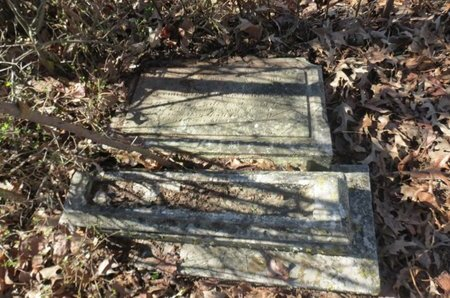 ANDREWS, JOHN ANNIE FAGIN - Hempstead County, Arkansas | JOHN ANNIE FAGIN ANDREWS - Arkansas Gravestone Photos