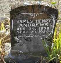 ANDREWS, JAMES HENRY - Hempstead County, Arkansas | JAMES HENRY ANDREWS - Arkansas Gravestone Photos