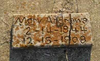ANDREWS, MARY - Hempstead County, Arkansas | MARY ANDREWS - Arkansas Gravestone Photos