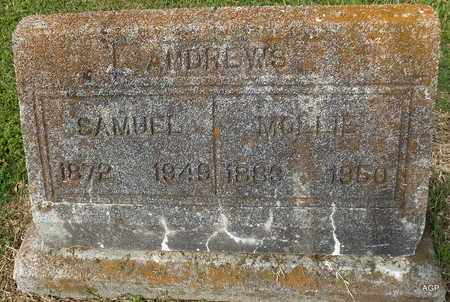ANDREWS, MOLLIE - Hempstead County, Arkansas | MOLLIE ANDREWS - Arkansas Gravestone Photos