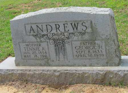 ANDREWS, GEORGE H - Hempstead County, Arkansas | GEORGE H ANDREWS - Arkansas Gravestone Photos