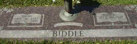 BIDDLE, DAVID - Hempstead County, Arkansas   DAVID BIDDLE - Arkansas Gravestone Photos