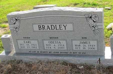 BRADLEY, JAMES - Hempstead County, Arkansas   JAMES BRADLEY - Arkansas Gravestone Photos