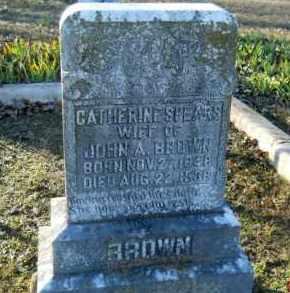 BROWN, CATHERINE - Hempstead County, Arkansas   CATHERINE BROWN - Arkansas Gravestone Photos
