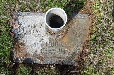 CHAMBERS, ELOUISE - Hempstead County, Arkansas   ELOUISE CHAMBERS - Arkansas Gravestone Photos