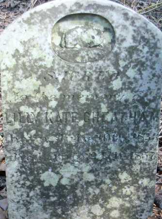 CHEATHAM, LILLY KATE - Hempstead County, Arkansas   LILLY KATE CHEATHAM - Arkansas Gravestone Photos