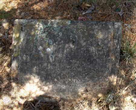 CHEATHAM, RUTH M - Hempstead County, Arkansas | RUTH M CHEATHAM - Arkansas Gravestone Photos