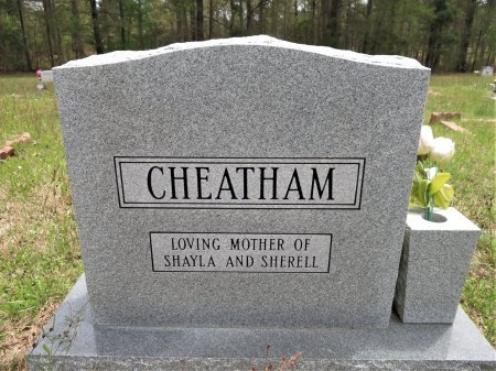 CHEATHAM, SHIRLEY ANN (BACKVIEW) - Hempstead County, Arkansas | SHIRLEY ANN (BACKVIEW) CHEATHAM - Arkansas Gravestone Photos