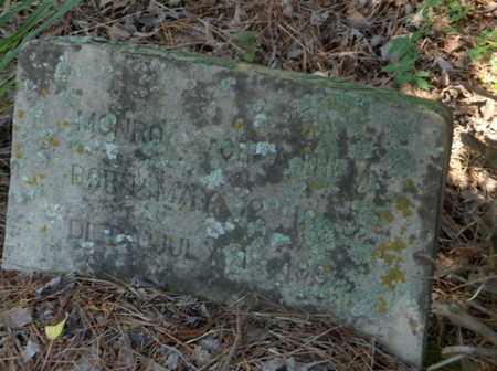CHEATHEM, MONRO - Hempstead County, Arkansas | MONRO CHEATHEM - Arkansas Gravestone Photos