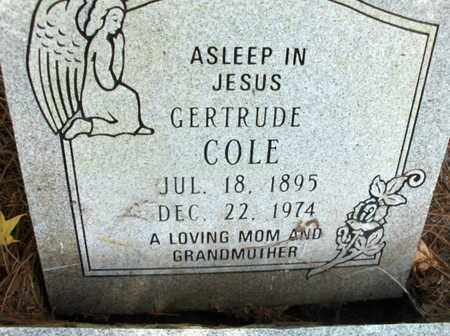COLE, GERTRUDE - Hempstead County, Arkansas | GERTRUDE COLE - Arkansas Gravestone Photos